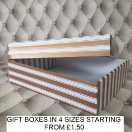 Large Gift Box Gold and White