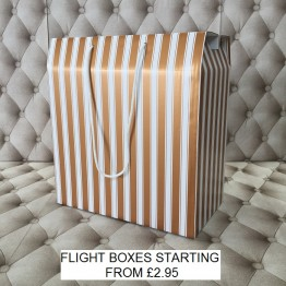Flight Box Gold and White
