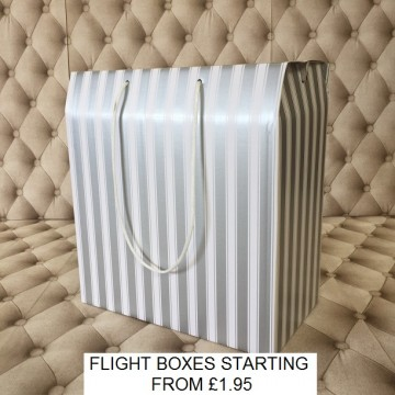 Flight Box Silver and White
